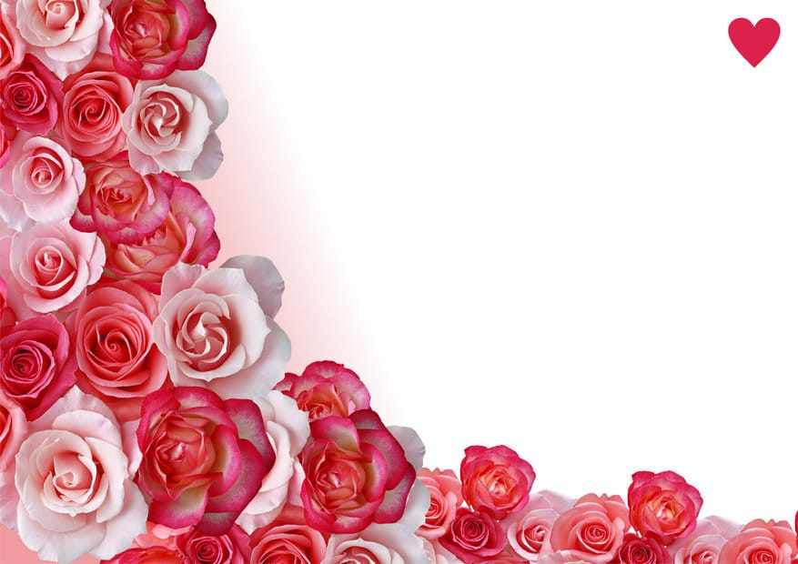 Top 10 Rated Florists in Northwest Arkansas for Valentines