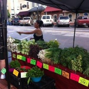 vegyys at farmers market