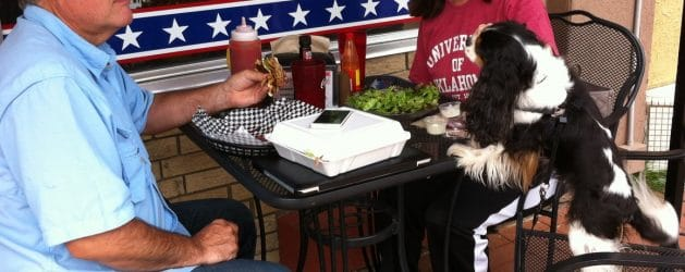 Top Pet Friendly Restaurant Patios & Decks