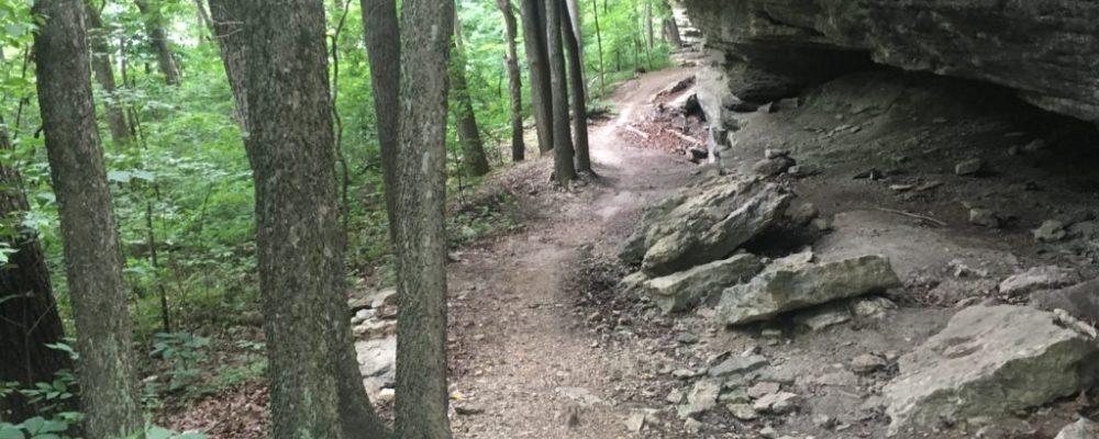 Top 10 Mountain Bike Trails in Northwest Arkansas – UPDATED